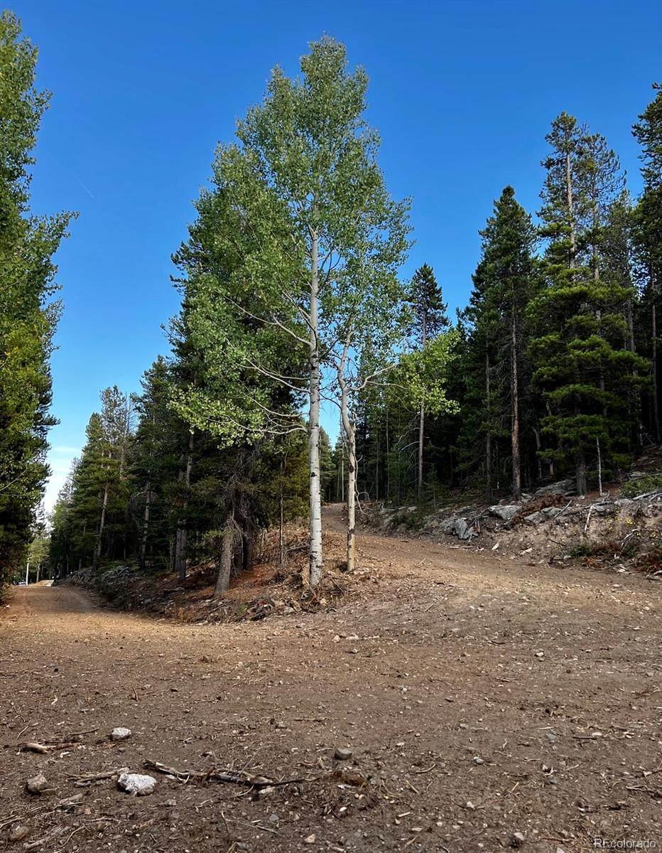 27348 Squaw Pass Road - Photo 1