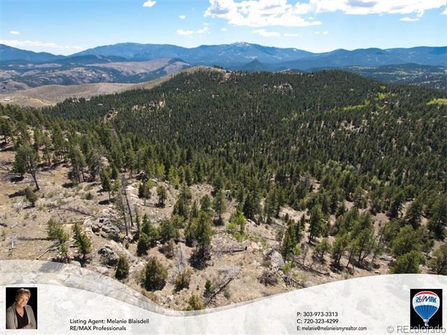 14937 Wilson Peak Road, Pine, CO 80470 (MLS #6095140) :: 8z Real Estate