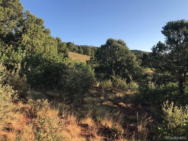 4580 Monitor Rock Lane, Colorado Springs, CO 80904 (#6181942) :: Wisdom Real Estate