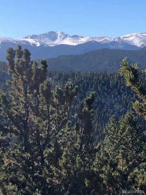 000 Overlooked Way, Idaho Springs, CO 80452 (#6363419) :: The FI Team