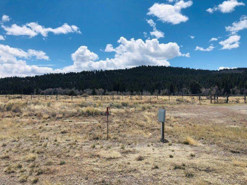 26714 State Hwy 17 Lot 11 - Photo 1