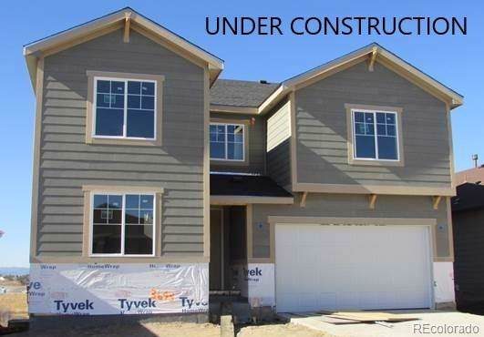 3643 White Rose Loop, Castle Rock, CO 80108 (#6810263) :: The DeGrood Team
