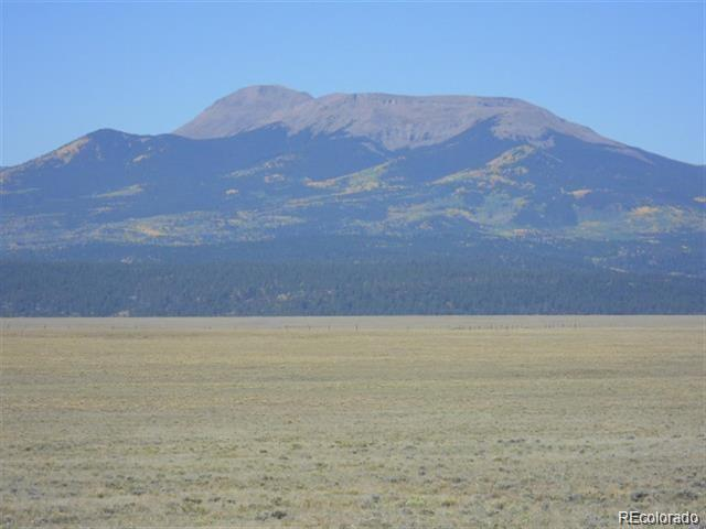 Badger Road, Hartsel, CO 80449 (#6908729) :: Structure CO Group