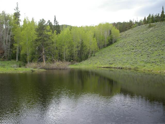 0 Highway 127, Walden, CO 80480 (MLS #7048073) :: 8z Real Estate