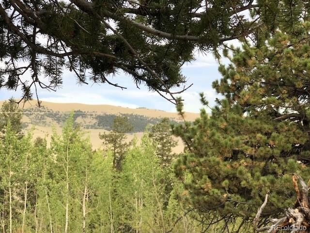 4037 Middle Fork Vista, Fairplay, CO 80440 (#7311334) :: The Peak Properties Group