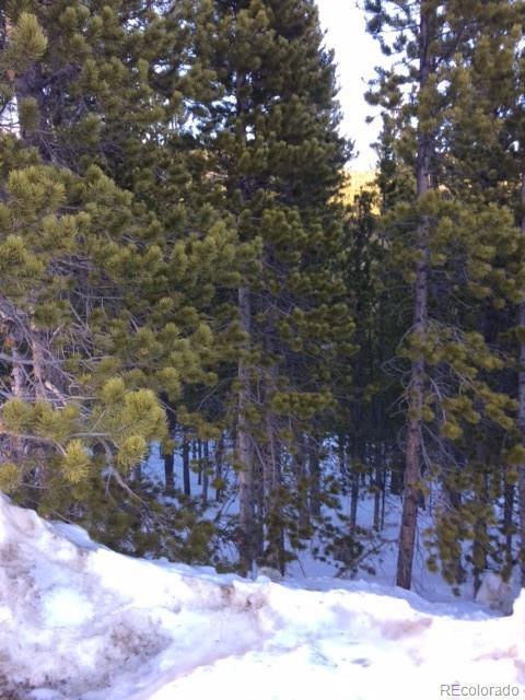 Lot 329 Eva Road, Idaho Springs, CO 80452 (#7972415) :: The DeGrood Team