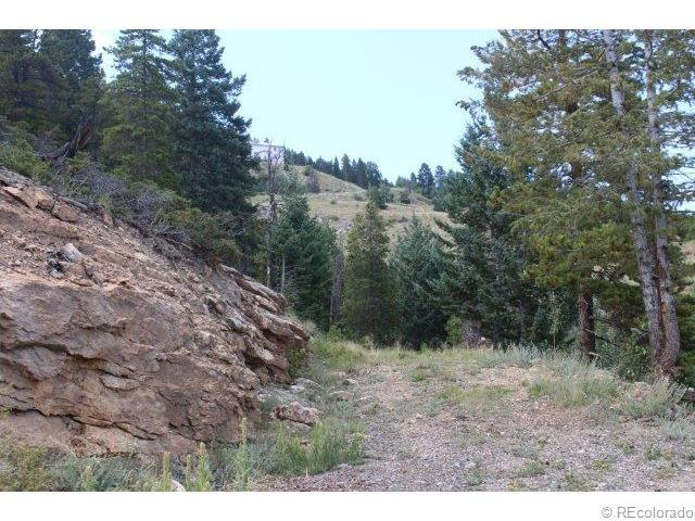 0 Hy Vu Drive, Evergreen, CO 80439 (MLS #8733270) :: 8z Real Estate