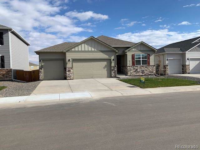 925 Camberly Drive, Windsor, CO 80550 (MLS #8879435) :: 8z Real Estate