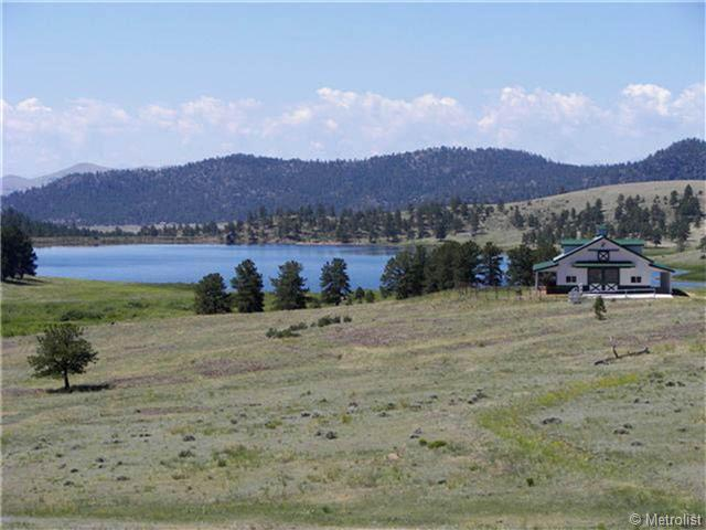 224 Lakeview Heights, Florissant, CO 80816 (MLS #895808) :: 8z Real Estate