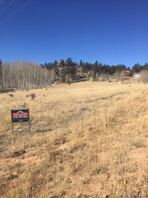 34 Buckskin Circle, Florissant, CO 80816 (#9035554) :: The Heyl Group at Keller Williams