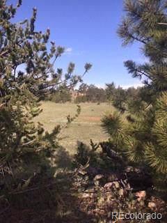 00 Running Bear Road, Hartsel, CO 80449 (MLS #9118528) :: 8z Real Estate