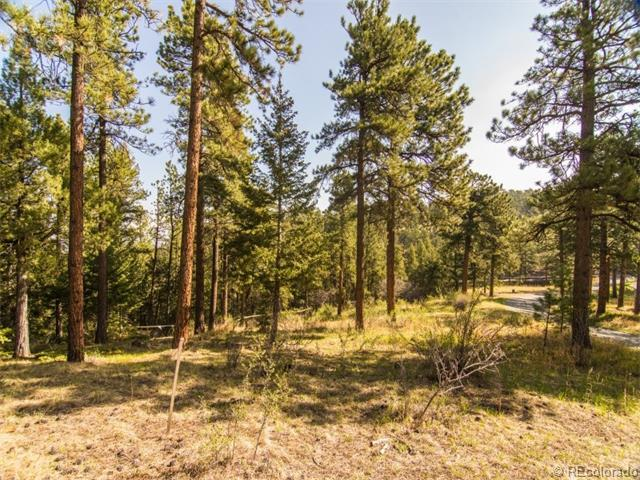 29472 Rainbow Hill Road, Evergreen, CO 80439 (MLS #9207152) :: 8z Real Estate