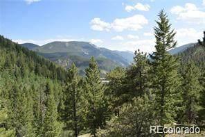 Empire Road, Empire, CO 80438 (MLS #9355775) :: 8z Real Estate