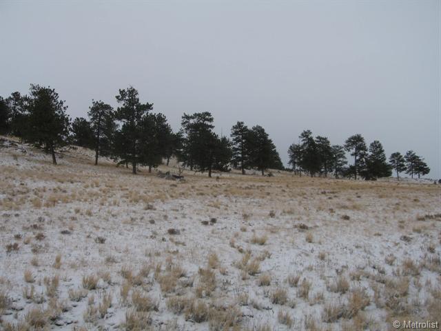 477 Goldenburg Canyon Road, Hartsel, CO 80449 (MLS #943946) :: 8z Real Estate