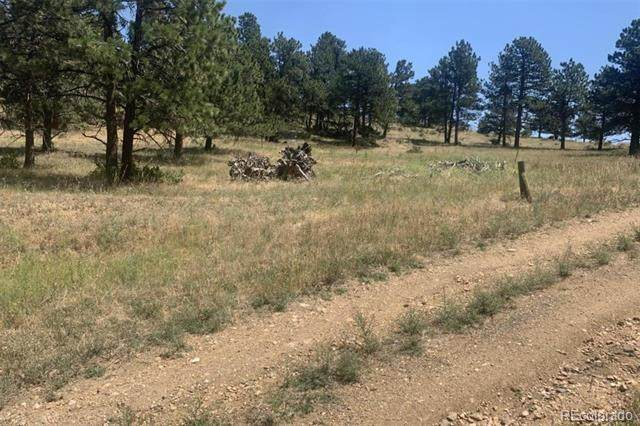 818 Deer Rest Road, Golden, CO 80439 (MLS #9609742) :: Kittle Real Estate