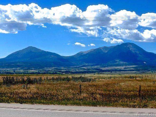 1315 County Road 451, La Veta, CO 81055 (#9692294) :: HergGroup Denver
