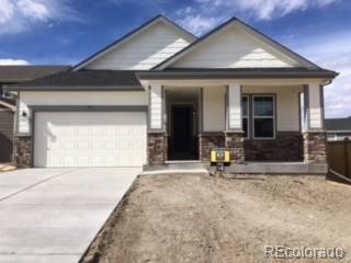 419 Midden Place, Castle Rock, CO 80104 (#9738059) :: The Peak Properties Group