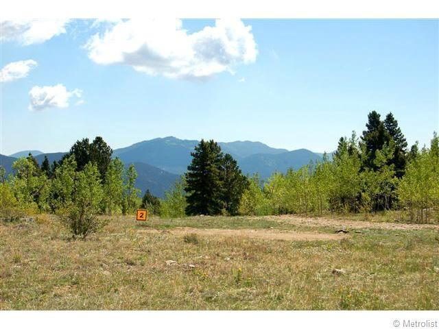 2 Bald Mountain Road, Central City, CO 80427 (#994165) :: The Heyl Group at Keller Williams