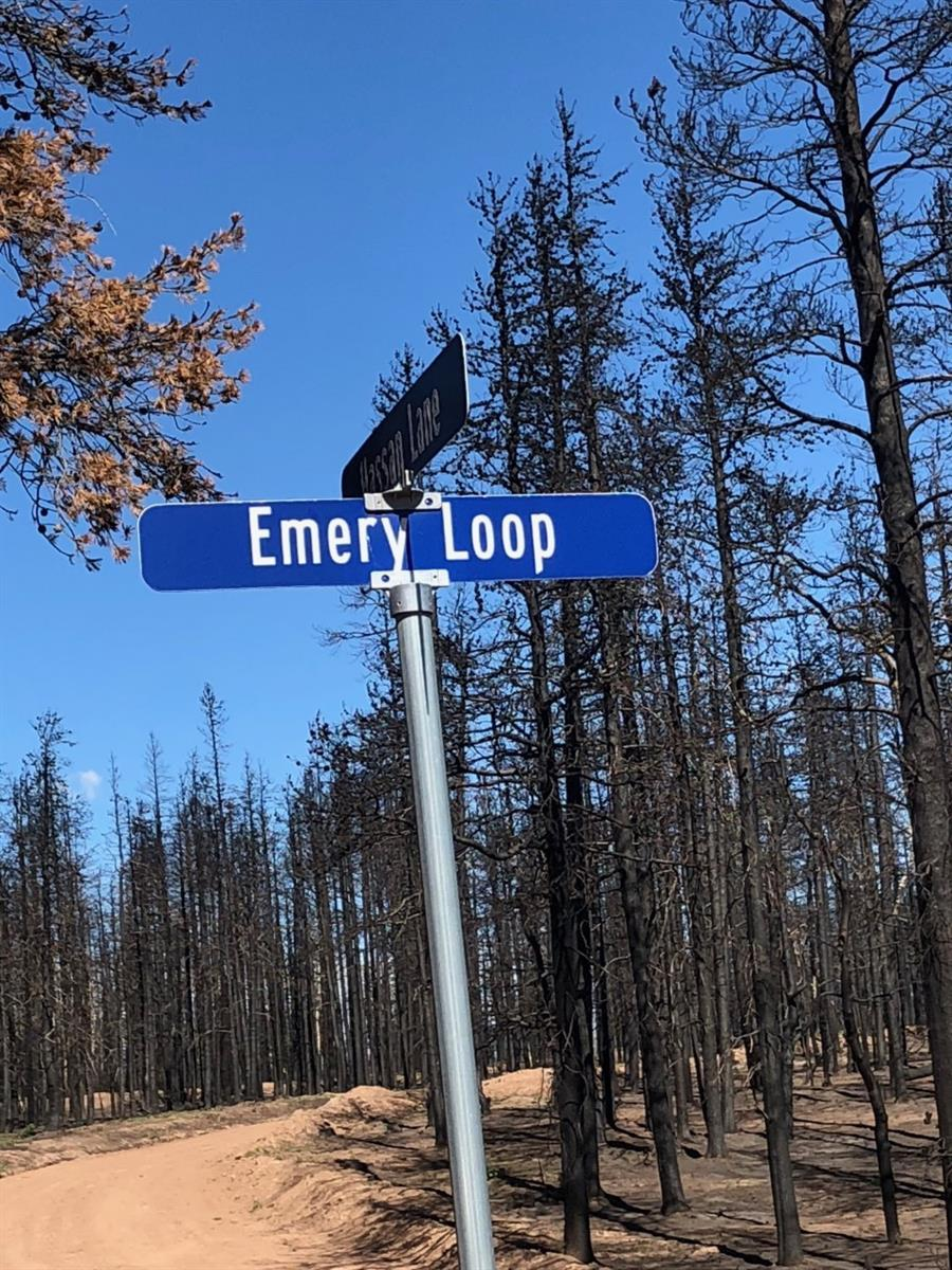 1612 Emery Loop - Photo 1