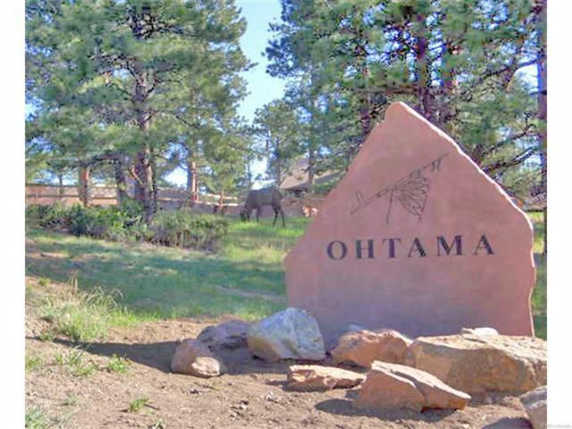 4437 Ohtama Drive, Evergreen, CO 80439 (MLS #1134830) :: 8z Real Estate