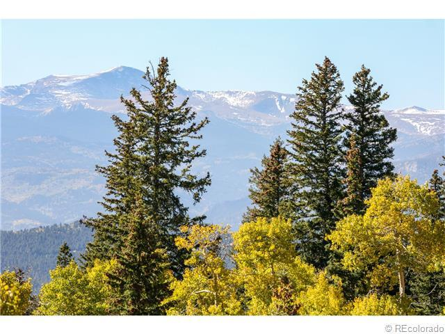 1701 Robinson Hill, Lot 4 Road, Golden, CO 80403 (MLS #1237335) :: 8z Real Estate