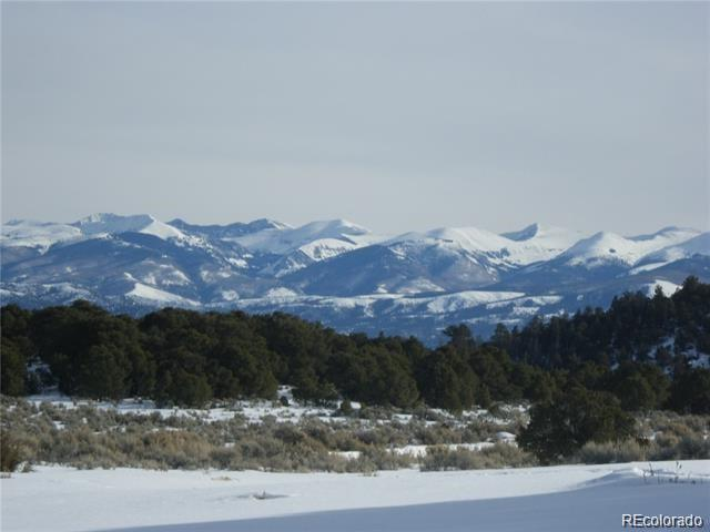 1 Big Buck Trail, San Luis, CO 81152 (#1900235) :: Bring Home Denver