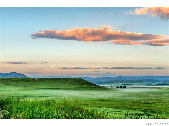 15389 W County Road 80, Livermore, CO 80536 (MLS #3881402) :: 8z Real Estate