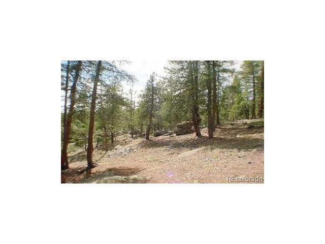 21735 Indian Springs Road, Conifer, CO 80433 (MLS #4639964) :: 8z Real Estate