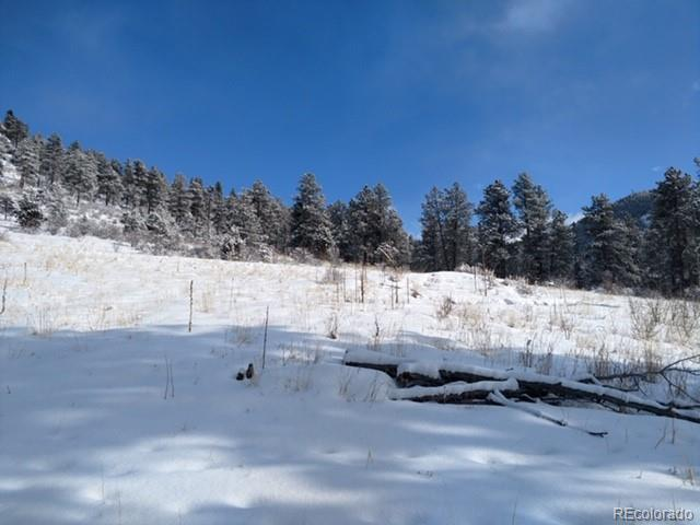 62430 Us Highway 285, Bailey, CO 80421 (#7436366) :: Mile High Luxury Real Estate