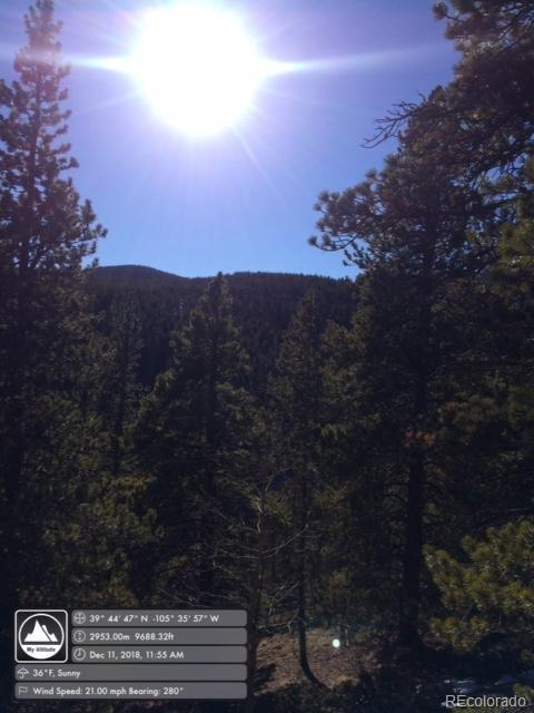 0 Trail Creek Road, Idaho Springs, CO 80452 (#7772590) :: HomePopper