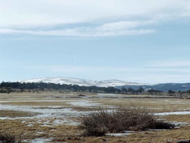 0 Lot 6 Lions Head Ranch, Pine, CO 80470 (MLS #802641) :: 8z Real Estate