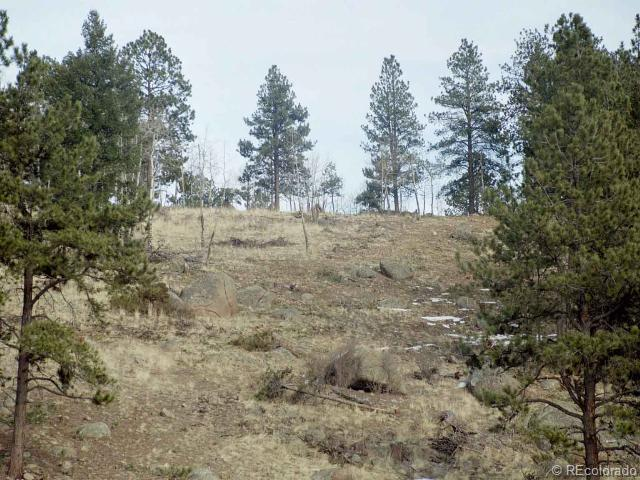 Lot 16 Lions Head Ranch, Pine, CO 80470 (#809840) :: The DeGrood Team