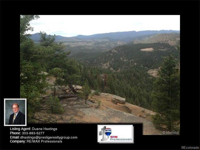 27216 Schuyler Gulch Road, Pine, CO 80470 (MLS #9018870) :: 8z Real Estate