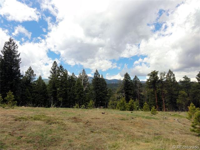 26897 Evergreen Springs Road, Evergreen, CO 80439 (MLS #9066057) :: 8z Real Estate