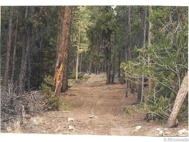 11 Breckenridge Drive, Alma, CO 80420 (MLS #9963500) :: 8z Real Estate