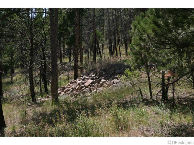 2444 County Road 87J, Ward, CO 80302 (MLS #1029506) :: 8z Real Estate