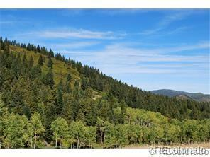 11717 S Maxwell Hill Road, Littleton, CO 80127 (MLS #2794223) :: 8z Real Estate