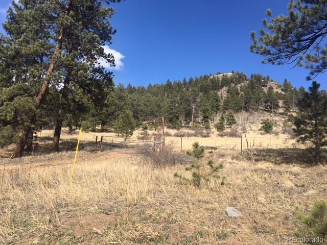 62430 Us Highway 285, Bailey, CO 80421 (MLS #7436366) :: 8z Real Estate