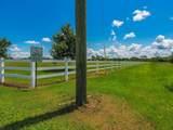 Hitching Post Way - Photo 9