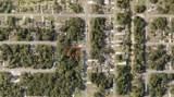 1144072105 San Mateo Drive - Photo 2