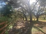 Cameo Farm Lane - Photo 1