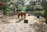 4873 Old Ranch Road - Photo 43