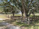 1501 Bern Creek Loop - Photo 32
