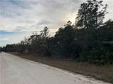 7433 Mandrake Road - Photo 2