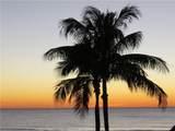 3313 Sabal Cove Drive - Photo 39