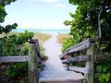 5873 Palm Lane - Photo 31