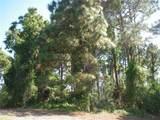 54 Pine Valley Lane - Photo 49