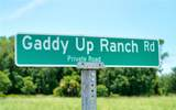 Gaddy Up Ranch - Photo 42