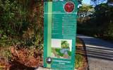 4739 Carrington Circle - Photo 42