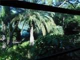 122 Wild Palm Drive - Photo 27